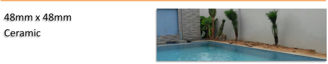 48mm x 48mm Ceramic Pool Tiles