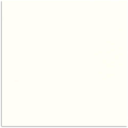 Super White Polish Tile 300x300