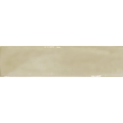 Pasha Earth Gloss Wall Tile 75x300