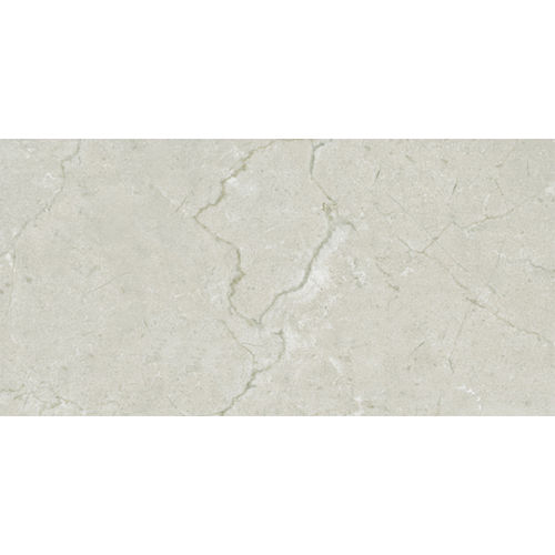 Charm Shell Gloss Wall Tile 300x600